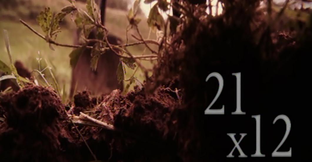 """Jornadas Retazos de nuestra historia. –Proyección del documental  """"21 X 12"""""""
